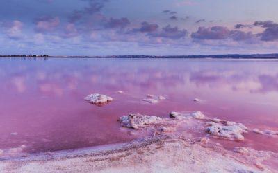 Altijd al willen zwemmen in een roze meer? Op naar Costa Blanca!